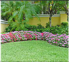 Our monthly service includes maintain Flower Beds